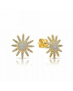 Shy Creation 14KYG Kate Diamond Starburst Earrings
